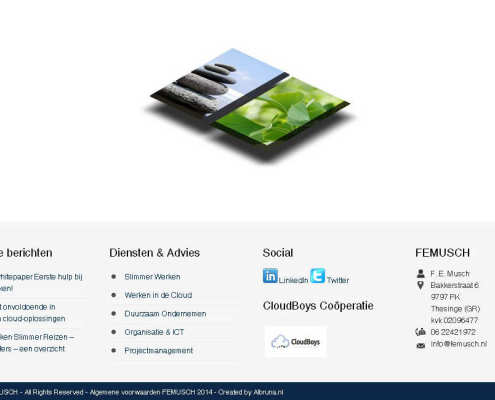 Femusch website screenshot