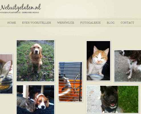 NetUitgelaten website screenshot