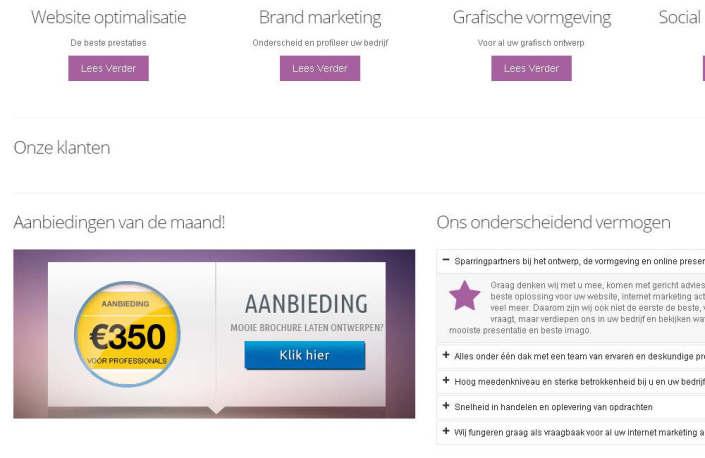 Zelfstandige Business Professionals website screenshot